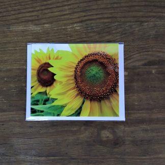 Grußkarte Sonnenblume